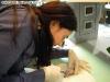 Prelievo di sangue su rana in anestesia